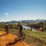 cyclists-1534907_960_720